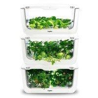 VegeBox Home - Cultivo Hidropónico Interior